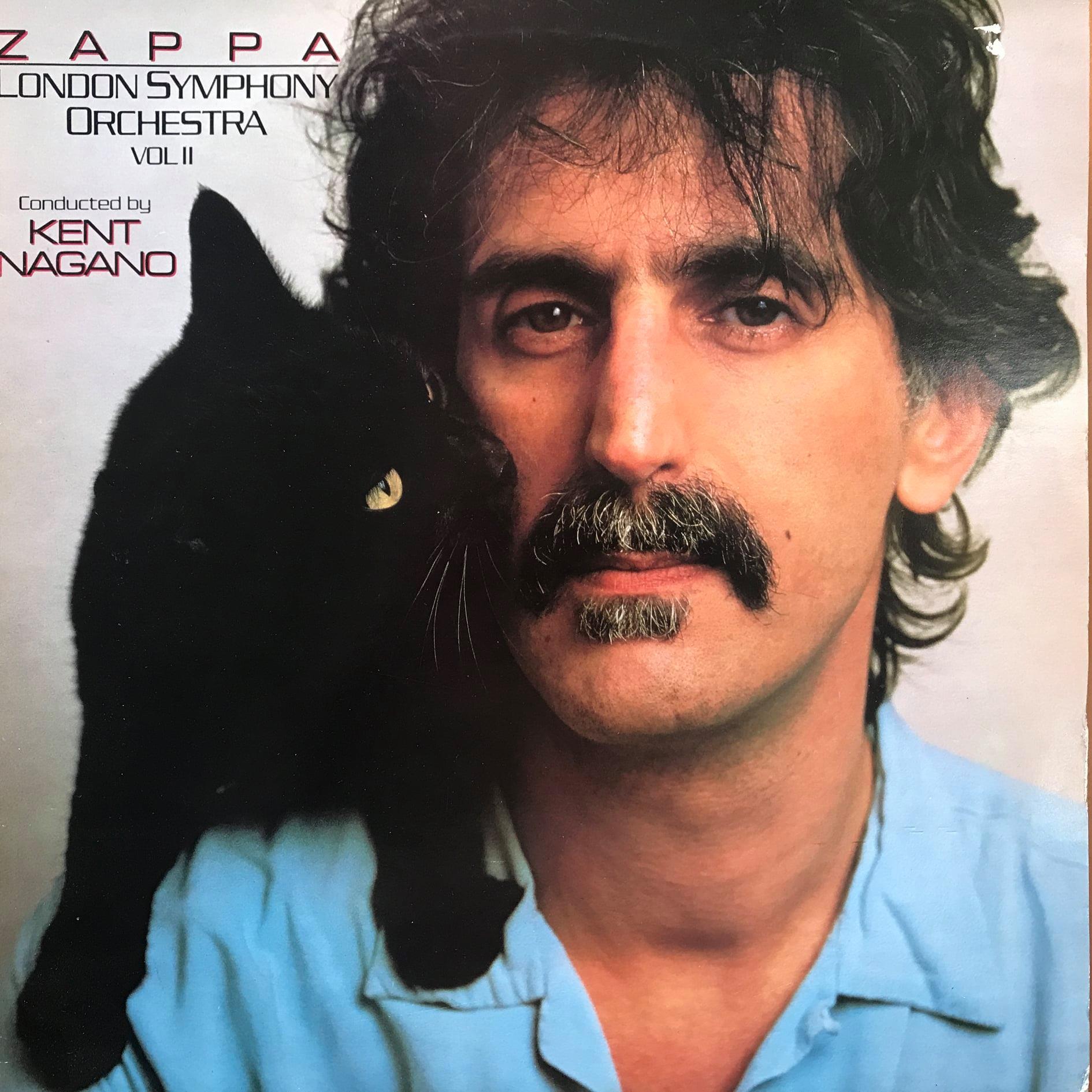 Lees meer over het artikel Frank Zappa